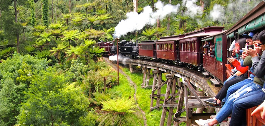 4 things you didn't know about puffing billy