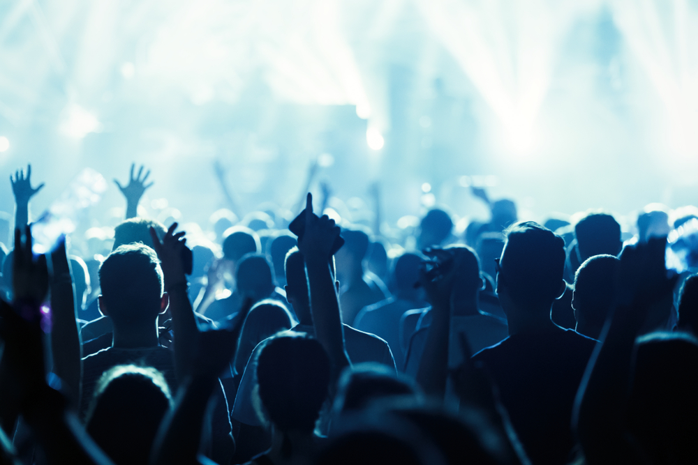 Crowd at Music Festival