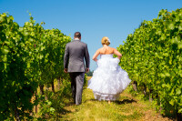 Top 6 Wedding Venues in Victoria (Winery Edition)